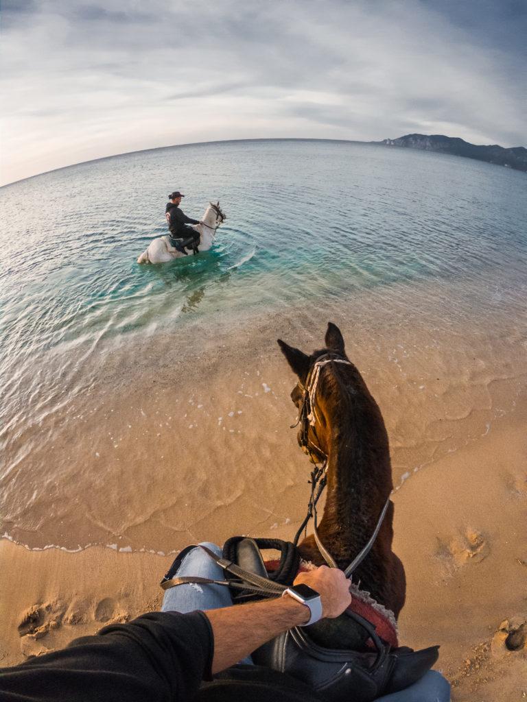 cavalli-viaggi-fotografici-mare-sardegna